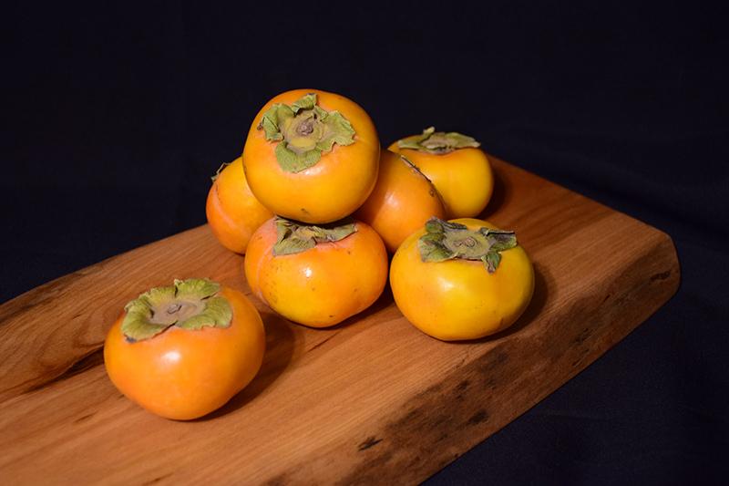 Fuyu Japanese Persimmon (Diospyros kaki 'Fuyu') at DeWayne's